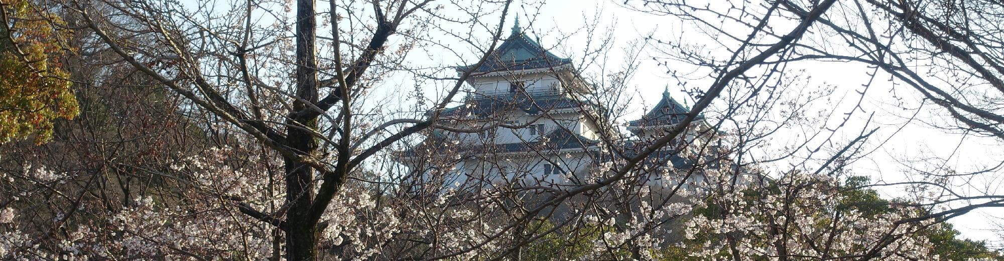 和歌山市語り部クラブのとっておき観光ガイド
